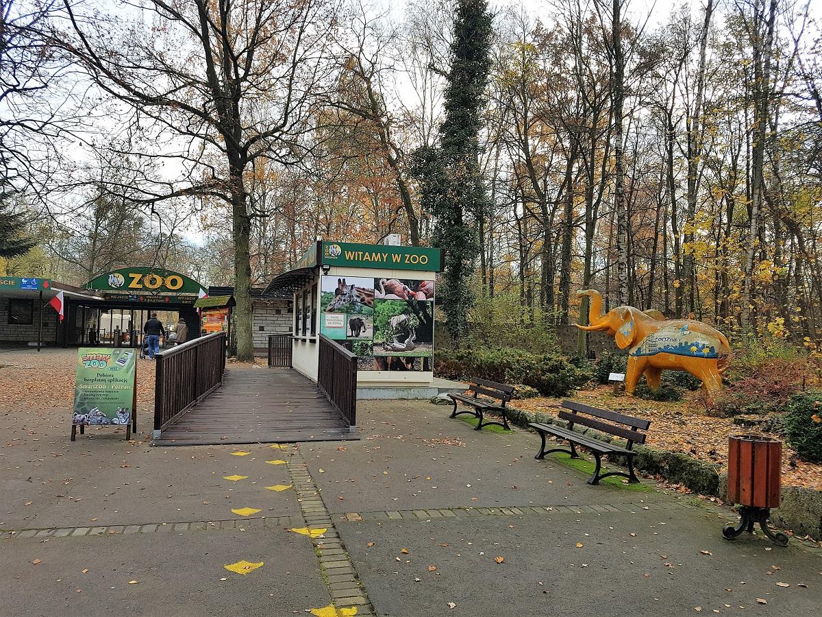 Nowe zoo nieuwe dierentuin in Poznan